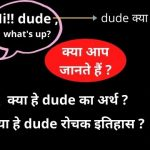 dude meaning in hindi